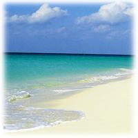 サーフ(砂浜)